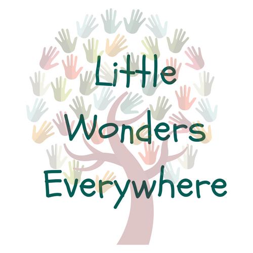 Little Wonders Everywhere